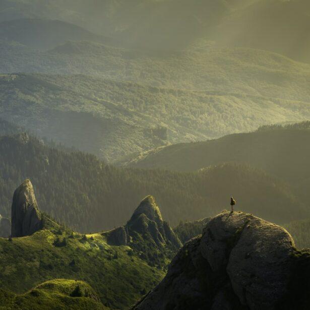 Webinar : Vivere la mia vulnerabilità come una risorsa